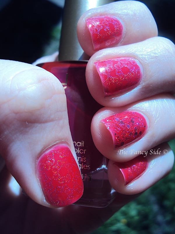 Holo Jelly Sandwich 3 (2)