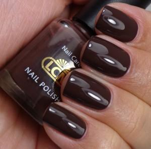 LCN Chocolate Fudge 2